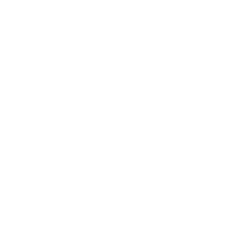 Macadam Basket Camp